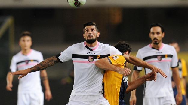 Calcio, Mercato, Palermo, rosanero, serie b, Beppe Iachini, Palermo, Calcio