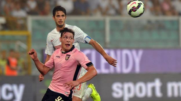 Calcio, lazio, Palermo, rosanero, Beppe Iachini, Sicilia, Palermo, Qui Palermo, Sport