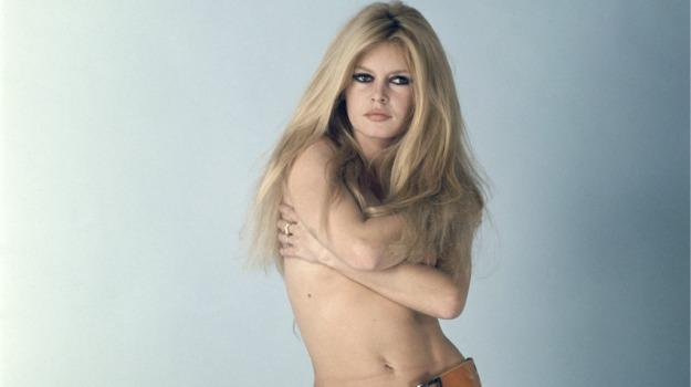 animali, appello, attrice, compleanno, presidente, Brigitte Bardot, Sicilia, Società
