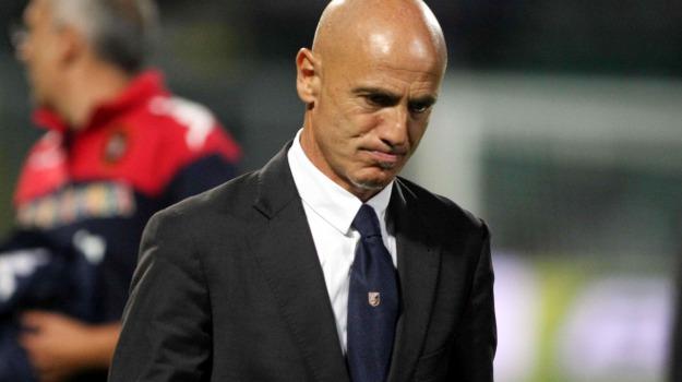 Calcio, catania, serie b, Giuseppe Sannino, Sicilia, Catania, Calcio