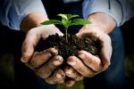 Unione Elimo-Ericini, bando per il mercato degli agricoltori