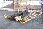 Senza lavoro si era dato fuoco, muore ambulante a Catania