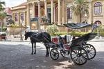 Cocchiere senza assicurazione: multa e sequestro di cavallo e calesse