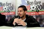 Palermo: rallenta la trattativa per Callegari, per l'attacco ipotesi Calaiò