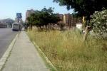 VOCI DALLE CITTA'. L'invasione delle erbacce e marciapiedi inagibili