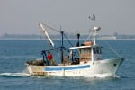 Petrosino, peschereccio affonda: si cercano ancora i 2 dispersi