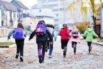 Rosolini, allarme topi a scuola: i bimbi restano a casa