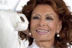 Sophia Loren incontrastata star del cinema italiano: 80 anni e vivere sereni