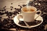 Cialde e tostatura sostenibili: il caffè è «eco»