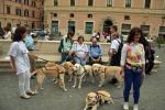 Unione ciechi, 50 cani guida sfilano per le strade di Roma