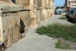 Crescono le erbacce a Palermo: sul marciapiede divieto di transito anche ai... pedoni. Ecco dove