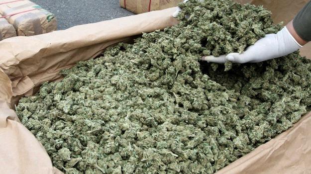 arresto, marijuana, Catania, Cronaca