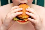 Lei è macrobiotica, lui carnivoro: genitori in Tribunale per l'alimentazione del figlio