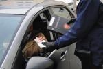 Guida senza patente, da oggi non è più reato: si rischia una multa fino a 15 mila euro