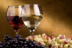 Cresce l'export di vino e spumanti, ma la vendita in Italia è stagnante