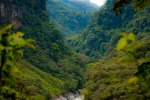 Amazzonia in agonia, a settembre rasi al suolo 402 chilometri quadrati