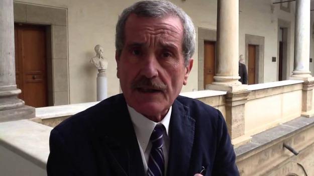 consulente, Carlo Vizzini, Leoluca Orlando, Palermo, Politica