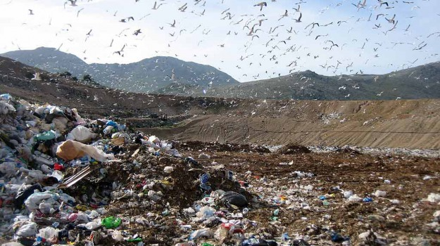 discarica bellolampo palermo piena, emergenza rifiuti palermo, Giuseppe Norata, Palermo, Cronaca