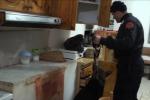 Traffico di droga fra Ragusa e Siracusa: operazione dei carabinieri all'alba, 20 arresti