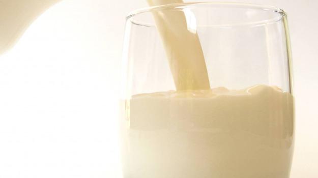 coldiretti, latte, ragusa, Ragusa, Cronaca