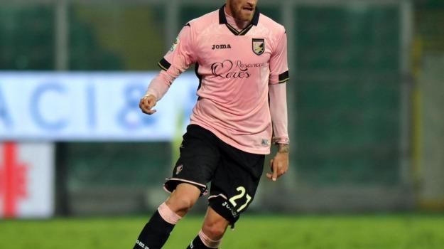 Calcio, centrocampista, Palermo, rosanero, sampdoria, Luca Rigoni, Palermo, Calcio