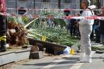 Donna colpita e uccisa da una palma a Catania, assolto dirigente del Comune