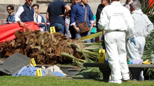 catania, donna uccisa, Maltempo, palma, Catania, Cronaca