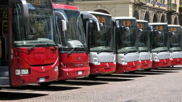 bus, corse, cresta, regione, Sicilia, Sicilia, Politica