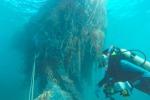 Sommersi dai rifiuti gli atolli del Pacifico