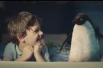 L'amicizia di un bambino con un pinguino: in Inghilterra lo spot di Natale è... milionario - Video