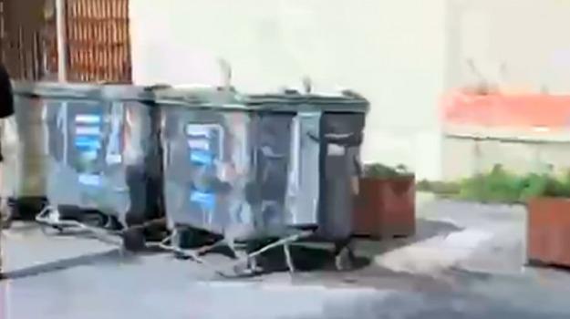 rifiuti, trapani, via virgilio, Trapani, Cronaca