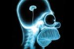 Il virus della stupidità esiste: riduce il quoziente intellettivo