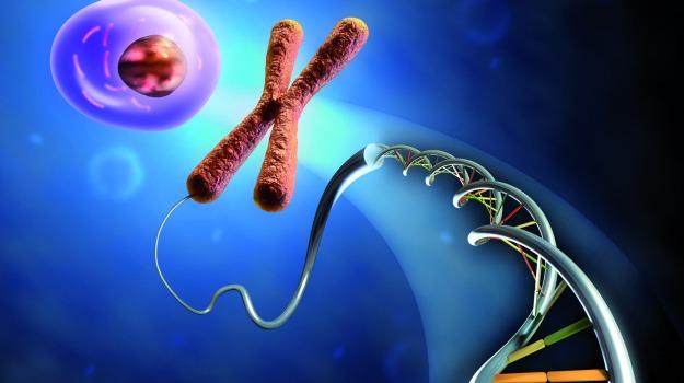 DNA, geni, laboratorio, ricerca, scoperta, Sicilia, Società