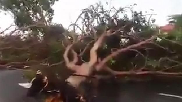 ciclone, danni, Maltempo, Sicilia, Caltanissetta, Cronaca