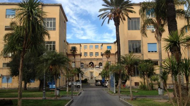 ospedale vittorio emanuele catania, Catania, Cronaca