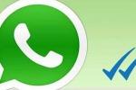 L'ascesa di WhatsApp: la popolare chat punta al miliardo di utenti