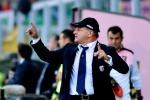 """Palermo, Iachini non si fida del Verona: """"Servirà grande partita"""""""