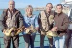 Sciacca, curate e liberate tre tartarughe Caretta-Caretta