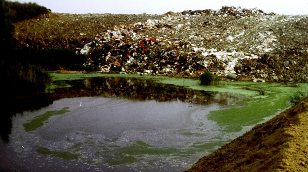 emergenza rifiuti, Sicilia, Politica