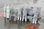 E' catanese il medico di Emergency contagiato dal virus dell'Ebola