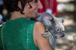 Agnese Renzi tra koala e mise tricolori, le foto di tutti i leader al G20