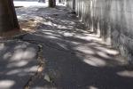 Marciapiedi ad ostacoli a Palermo, anche per le carrozzelle uno slalom senza fine tra buche e rifiuti