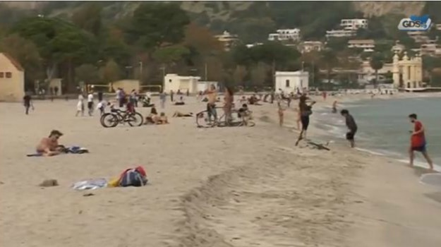 alghe, rifiuti, Palermo, Voci dalla città