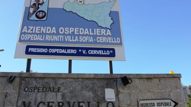feto, ospedale, Palermo, Palermo, Cronaca