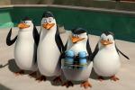Da Madagascar quattro pinguini contro un polpo odioso
