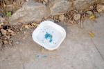 Palermo, per strada costretti allo slalom tra veleni per gatti e immondizia: ecco dove