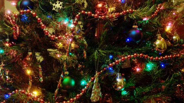 albero di natale, Siracusa, società, Siracusa, Società