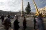 Alto oltre 25 metri e pesante 80 quintali: arriva a San Pietro l'albero di Natale per Papa Francesco - Foto