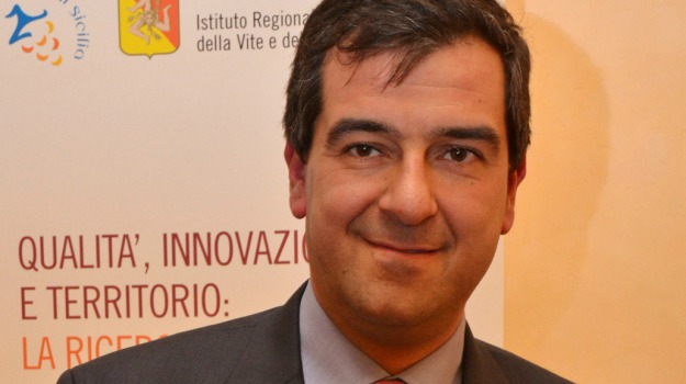 istituto vino e olio, Dario Cartabellotta, Sicilia, Economia
