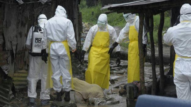 virus ebola, Sicilia, Società